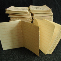 ICI-IFPsfs_copy_book-sq