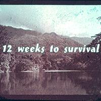 ICI-EK12weeks_survival_ed-sq