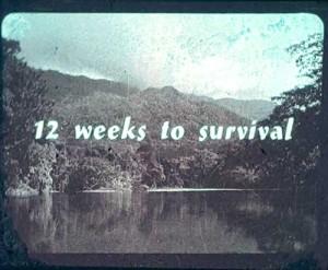 ICI-EK12weeks_survival_ed-w